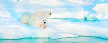 High Arctic Explorer 2021